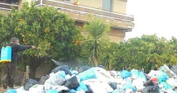 Σε απόγνωση οι Πυργιώτες ψεκάζουν τα σκουπίδια!