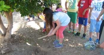 Παγκόσμια Ημέρα Περιβάλλοντος: Φύτευση σπόρων από μαθητές της Α/θμιας Εκπαίδευσης
