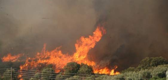 Κοινωνικό μήνυμα για τις πυρκαγιές από την Π.Υ. Αγρινίου (video)