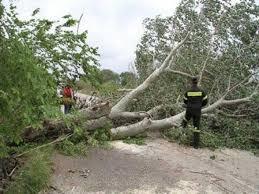 Ανεμοστρόβιλος προκάλεσε σοβαρές ζημιές στην Ποταμούλα!