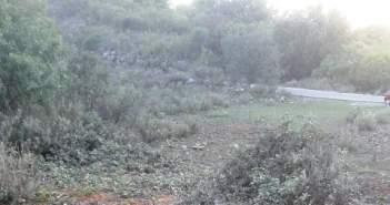 Πληγή για το Ξηρόμερο η λαθροϋλοτομία – Καταγγελία από την Οικολογική Κίνησης Δυτικής Ελλάδας