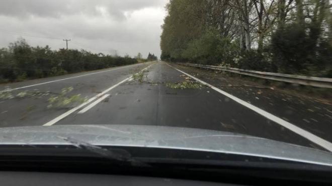 Πατρών – Πύργου: Οι θυελλώδεις άνεμοι και η καταιγίδα έσπασαν δέντρα – Επικίνδυνη η κυκλοφορία οχημάτων (ΔΕΙΤΕ ΦΩΤΟ)