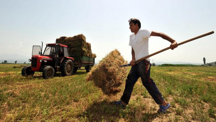 95.000 αγρότες θα επιστρέψουν 215 εκατ. ευρώ από παράνομες επιδοτήσεις