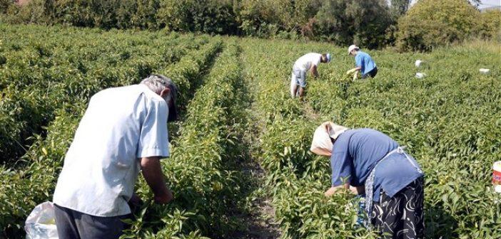 Ολοκληρώνεται η σύσταση της Αγροτοδιατροφικής Σύμπραξης της Περιφέρειας Δυτικής Ελλάδας