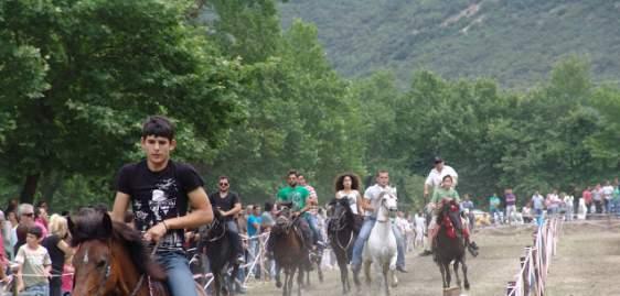 8ο Αντάμωμα καβαλάρηδων και φίλων αλόγου στη Νήσσα του Δήμου Ακτίου – Βόνιτσας