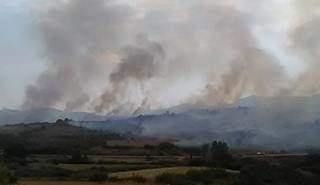Υπό μερικό έλεγχο η πυρκαγιά στις Φυτείες κοντά στην Ιερά Μονή Λιγοβιτσίου – Έχει κάψει 1.000 στρέμματα αγροτοδασικής έκτασης και ένα φωτοβολταϊκό πάρκο (ΔΕΙΤΕ ΦΩΤΟ του sinidisi.gr)