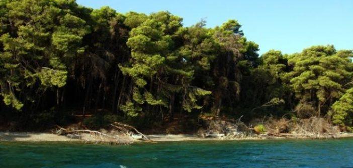 Αχαΐα: Συναγερμός στην Παναγοπούλα – Βρήκαν δύο χειροβομβίδες σε απόσταση αναπνοής από την ακτή