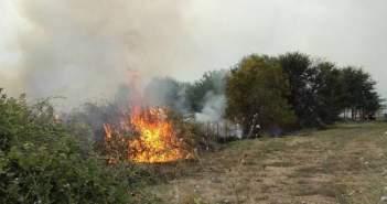 Πυρκαγιά στην Αμφιλοχία (ΔΕΙΤΕ ΦΩΤΟ)