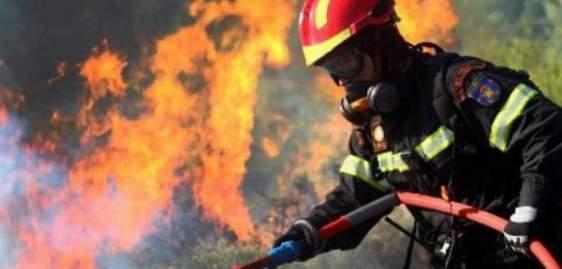 Υπό έλεγχο η πυρκαγιά στα Παλιάμπελα Βόνιτσας