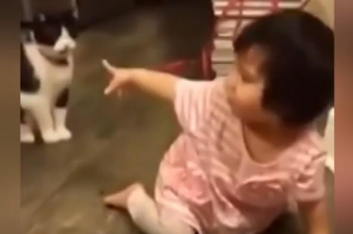 """Τελικά οι γάτες είναι """"σατανικά"""" κατοικίδια.. (ΔΕΙΤΕ ΒΙΝΤΕΟ)"""