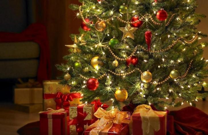 Ναύπακτος: Άναμμα Χριστουγεννιάτικου Δέντρου στη Κεντρική Πλατεία
