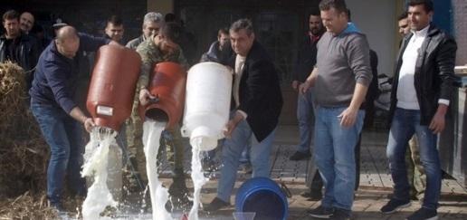 Μεσολόγγι: Άδειασαν γάλα στην είσοδο της Π.Ε. οι κτηνοτρόφοι