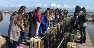 Ο Εορτασμός της Παγκόσμιας Ημέρας Υγροτόπων στην Λιμνοθάλασσα Μεσολογγίου – Αιτωλικού