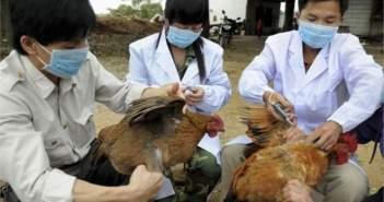 Μεσολόγγι: Σε λειτουργία κέντρο ελέγχου για την γρίπη των πτηνών