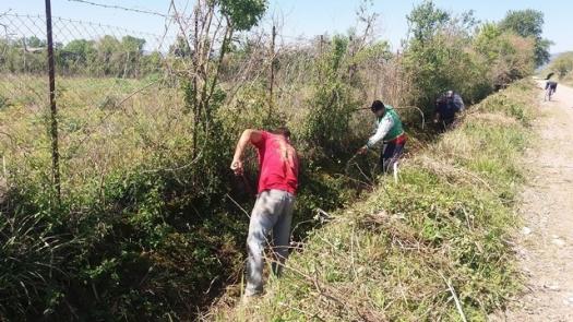 Εργασίες καθαρισμού αγροτεμαχίων και οικοπέδων στο Δήμο Μεσολογγίου