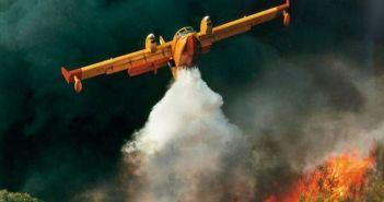 Πυρκαγιά σε δασική έκταση στον Τρύφο Ξηρομέρου – Στην κατάσβεση συμμετέχουν και εναέριες δυνάμεις
