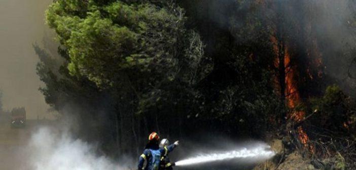 Ζάκυνθος: Κάηκαν σπίτια στο χωριό Αναφωνήτρια (ΔΕΙΤΕ ΒΙΝΤΕΟ)