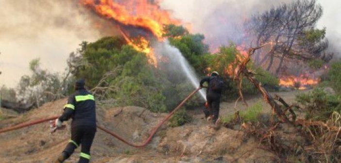 Φωτιά στους Αμοργιανούς Βάλτου – Μεγάλη η κινητοποίηση των Αρχών