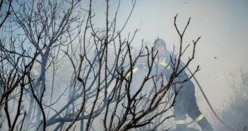 Δυτική Ελλάδα: Σε εξέλιξη η μεγάλη φωτιά στο Σανταμέρι – Νέα πυρκαγιά στον Άγιο Νικόλαο Σπάτα – Υπόνοιες για εμπρησμό (ΔΕΙΤΕ ΦΩΤΟ)