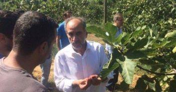 Ποιο φρούτο λατρεύει ο Απόστολος Κατσιφάρας; (ΔΕΙΤΕ ΦΩΤΟ)