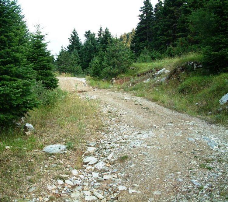 """""""ΦιλόΔημος"""": Εντάξεις έργων αγροτικής οδοποιίας στους Δήμους Αμφιλοχίας και Ακτίου – Βόνιτσας"""