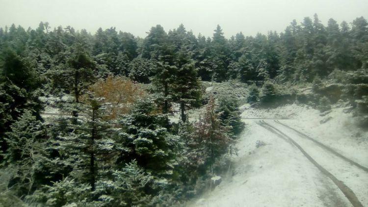 Χιονόνερο και χαμηλές θερμοκρασίες τα Χριστούγεννα στη Δυτική Ελλάδα