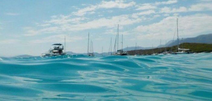Βαθυαβάλι: Μια υποβρύχια βόλτα δίπλα στα ψάρια (ΔΕΙΤΕ VIDEO)