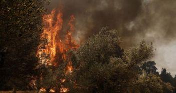 Αυξημένος κίνδυνος πυρκαγιάς για σήμερα στη Δυτική Ελλάδα