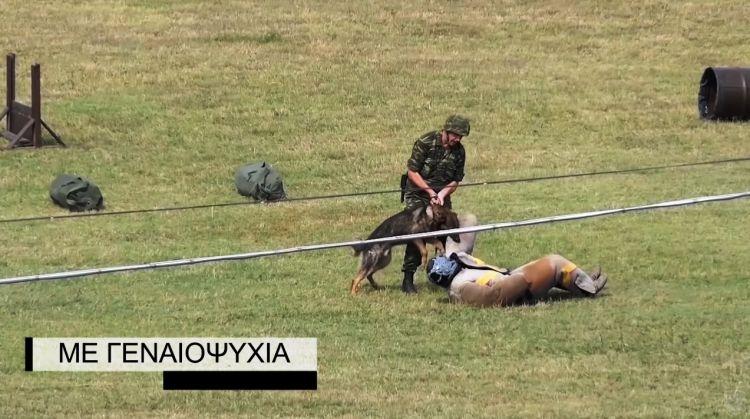Εντυπωσιακό βίντεο με τους σκύλους-κομάντος του Στρατού μας εν δράσει!