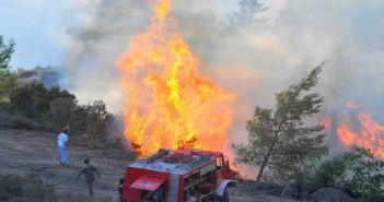 Kίνδυνος εκδήλωσης πυρκαγιάς σήμερα Κυριακή και αύριο Δευτέρα 12 Αυγούστου στη Δυτική Ελλάδα – ΔΕΙΤΕ ΧΑΡΤΕΣ