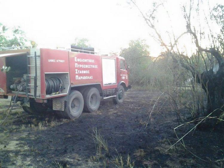 Πυρκαγιά στο Παναιτώλιο έκαψε ελαιόδεντρα