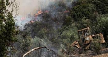 Η κλιματική αλλαγή πλήττει την Πελοπόννησο και τη Στερεά Ελλάδα – Από τι απειλούμαστε