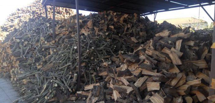 Αιτωλοακαρνανία: Μάστιγα για τους εμπόρους καυσόξυλων η λαθροϋλοτομία(ΔΕΙΤΕ ΦΩΤΟ)