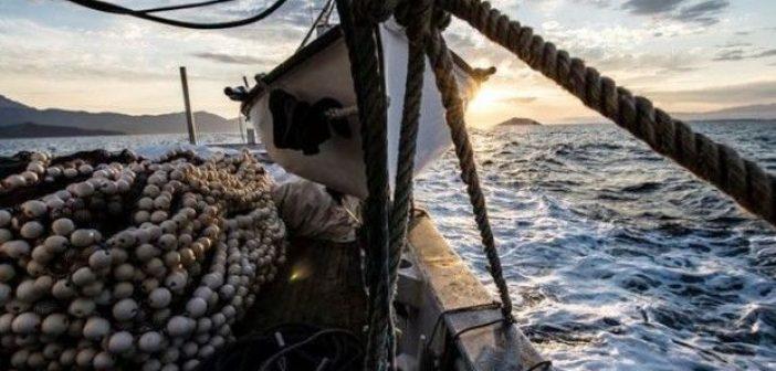 Παράνομη αλιεία στον Αμβρακικό: 492 παραβάσεις από το 2015!
