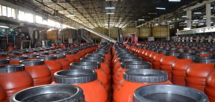 Ένωση Αγρινίου: Εργοστάσιο επεξεργασίας – τυποποίησης ελαιών (ΔΕΙΤΕ ΦΩΤΟ)