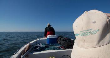 Λιμνοθάλασσα Μεσολογγίου: Μια ματιά κάτω από την επιφάνεια (ΔΕΙΤΕ ΦΩΤΟ)
