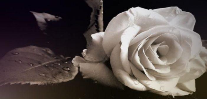 Συλλυπητήρια και από τον Απόλλωνα Δοκιμίου για τον θάνατο του Μπάμπη Γιωτόπουλου