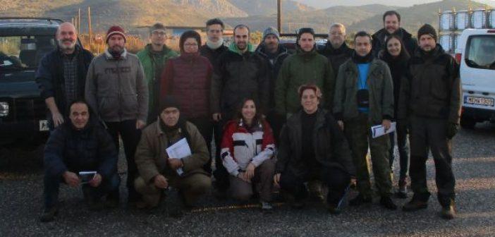 Με επιτυχία οι Μεσοχειμωνιάτικες Καταμετρήσεις του 2019 στο Εθνικό Πάρκο Λιμνοθαλασσών Μεσολογγίου – Αιτωλικού