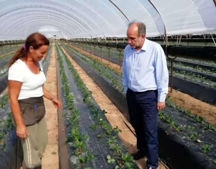 Περιφέρεια: Χρονιά στήριξης των νέων αγροτών το 2018 – Εγκρίθηκαν και χρηματοδοτήθηκαν 1.731 σχέδια σε Αιτωλοακαρνανία, Αχαΐα και Ηλεία (VIDEO)