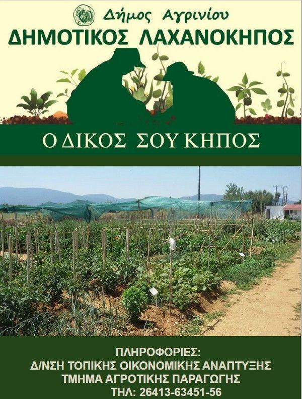 Δήμος Αγρινίου: Υποβολή αιτήσεων για παραχώρηση κηποτεμαχίου στον  Δημοτικό Λαχανόκηπο