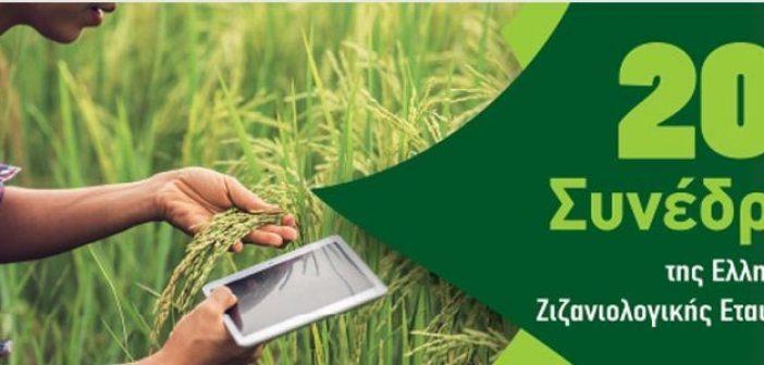 Παρουσία Αραχωβίτη το 20ο Πανελλήνιο Συνέδριο Ζιζανιολογίας στο Αγρίνιο