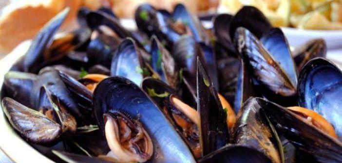 Η νομοθεσία για την αλιεία οστράκων από τον Αμβρακικό Κόλπο
