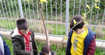 Δενδροφύτευση από μαθητές και εκπαιδευτικούς του 19ου Δημοτικού Σχολείου Αγρινίου (ΦΩΤΟ)