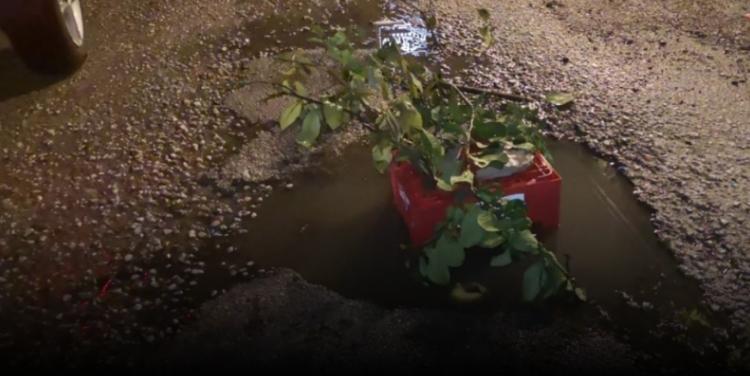 Δυτική Ελλάδα: Αυτή είναι μια λακκούβα με άποψη, στα Δεμένικα – Τη στόλισαν για να μην πέσει κανείς μέσα (VIDEO)