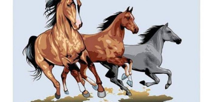 Γιορτή αλόγου την Κυριακή 12 Μαΐου στη Βόνιτσα