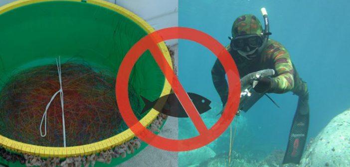 Νομοθεσία: Τι Απαγορεύεται το Μάιο στο ψάρεμα