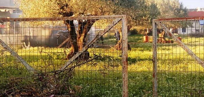 """Αγρίνιο: """"Άρπαξε"""" αποθήκη σε χωράφι – Κινητοποίηση της Πυροσβεστικής (ΦΩΤΟ)"""