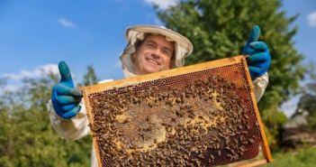 """""""Εκπαιδεύσεις Μελισσοκόμων"""" στο πλαίσιο βελτίωσης της μελισσοκομίας"""
