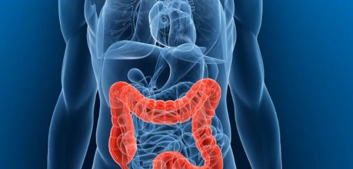 Καρκίνος εντέρου: Οι επιστήμονες ανακάλυψαν την τροφή που σκοτώνει το 75% των όγκων!