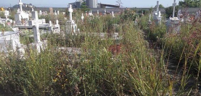 Απαράδεκτη η κατάσταση στο κοιμητήριο Βόνιτσας! Εγκατάλειψη, χόρτα και βλάστηση! (ΔΕΙΤΕ ΦΩΤΟ)